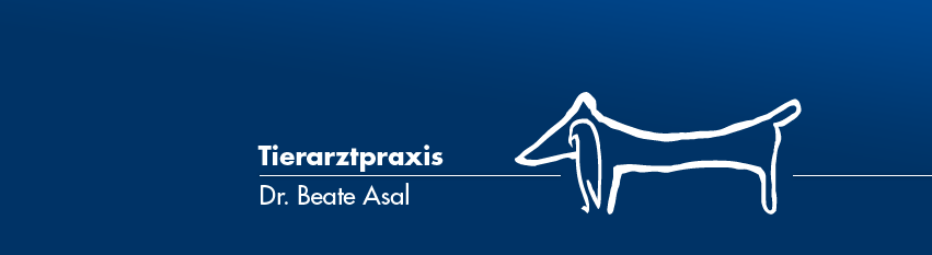 Tierarztpraxis Dr. Asal